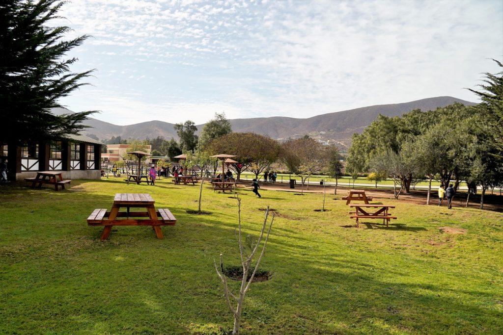 Jardín cancha